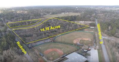 Tomball Farm & Ranch For Sale: Rudolph Road