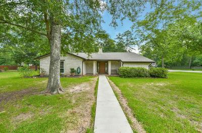 New Caney Single Family Home For Sale: 2523 Catacombs Drive