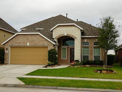 Houston Single Family Home For Sale: 15827 Mesenbrink Lane