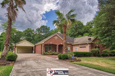 Porter Single Family Home For Sale: 19498 Balsas Drive