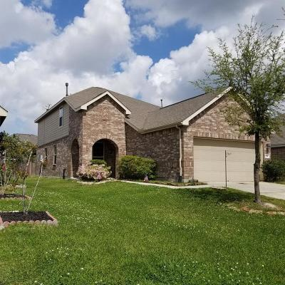 Houston Single Family Home For Sale: 2762 Morgensen Drive