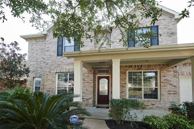 Tomball Single Family Home For Sale: 18407 Sierra Falls Court