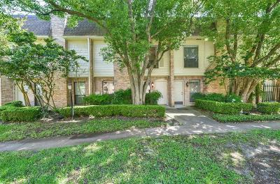 Harris County Rental For Rent: 1601 S Shepherd Drive #39