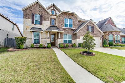 Riverstone Single Family Home For Sale: 5219 Birch Falls Lane