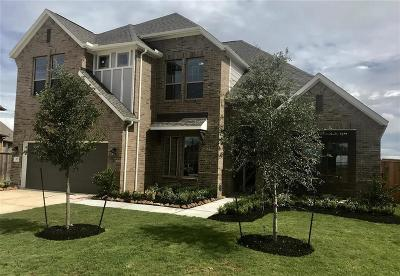Tomball Single Family Home For Sale: 8827 Havenfield Ridge