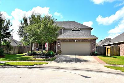 Tomball Single Family Home For Sale: 11507 Bermondsey Drive