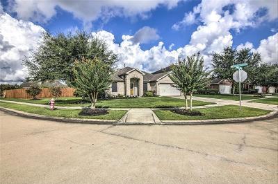 League City Single Family Home For Sale: 559 Small Cedar Drive