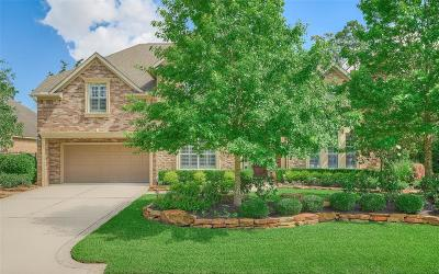 The Woodlands Single Family Home For Sale: 50 Mohawk Path Trail