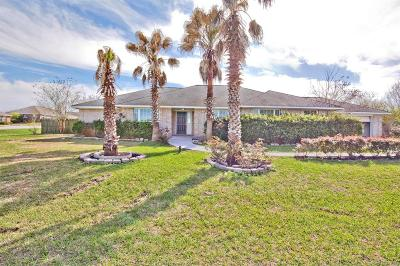 Willis Single Family Home For Sale: 13171 Bunker Hill Drive