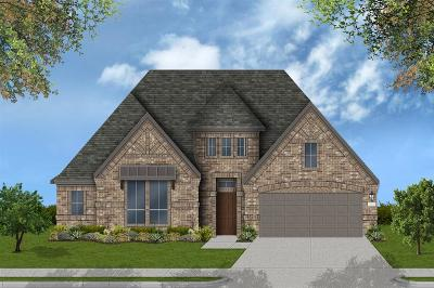 Galveston County, Harris County Single Family Home For Sale: 13822 Skylark Bend Lane