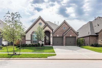 New Caney Single Family Home For Sale: 18968 Columbus Mill Drive