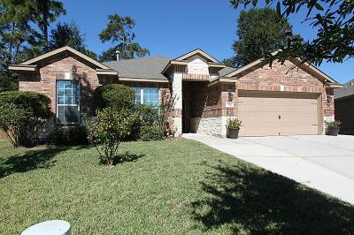 Conroe Single Family Home For Sale: 973 Wannan Lane