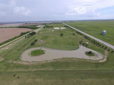 Wharton County Farm & Ranch For Sale: 12848 Hwy 60 S