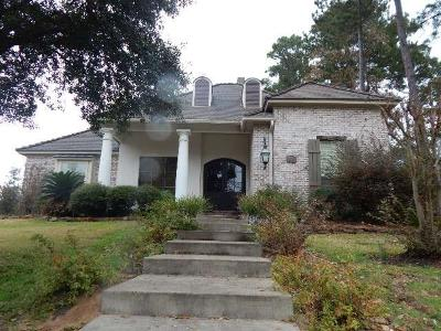Conroe Single Family Home For Sale: 10 Evangeline Boulevard