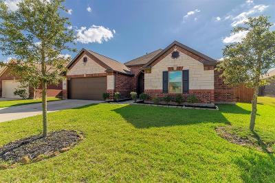 Pearland Single Family Home For Sale: 13938 Ginger Rose Court