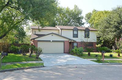 Sugar Land Single Family Home For Sale: 13703 Southline Road