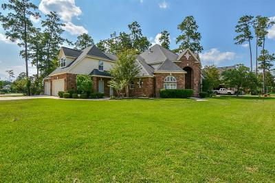 Spring Single Family Home For Sale: 25307 Piney Bend Court