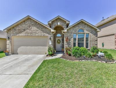 Tomball Single Family Home For Sale: 25319 Saddlebrook Champion Way