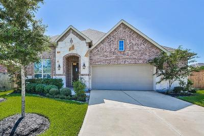 Cypress Single Family Home For Sale: 20715 Max Sky Court
