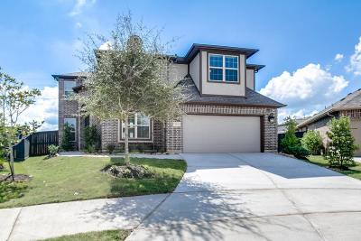 Single Family Home For Sale: 1003 Cool Corner Court