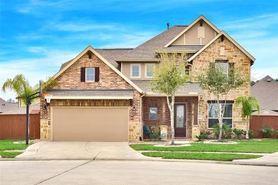 Galveston County, Harris County Single Family Home For Sale: 14902 Primrose Hollow Court