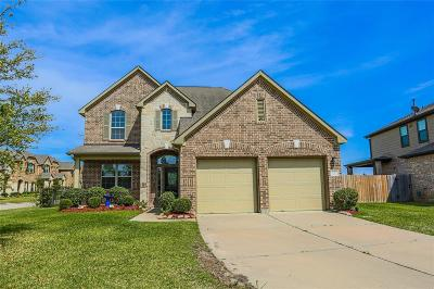 Single Family Home For Sale: 15922 Mustang Mountain Court