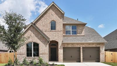 Pearland Single Family Home For Sale: 3703 Ashford Bridge Lane