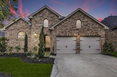 Katy Single Family Home For Sale: 2226 Falcon Brook Drive