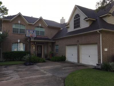 Katy Single Family Home For Sale: 3114 Canyon Links Drive