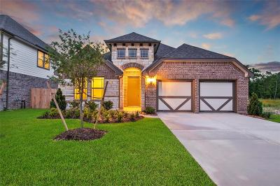 Katy Single Family Home For Sale: 6915 Nortchester Drive