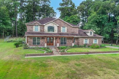 Polk County Single Family Home For Sale: 590 Pebble Creek Creek