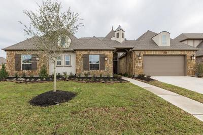Friendswood Single Family Home For Sale: 2548 Scenic Hills Drive