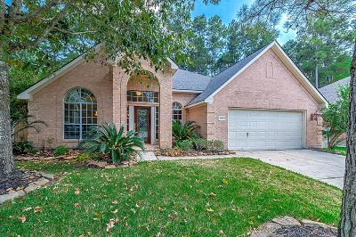Spring Single Family Home For Sale: 6026 Capella Park Drive