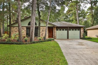 Single Family Home For Sale: 98 E Mistybreeze Circle