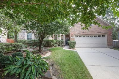 The Woodlands Single Family Home For Sale: 11 Cairn Oaks Place