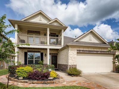 League City Single Family Home For Sale: 6807 Linden Creek Lane