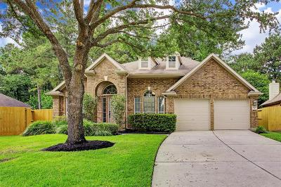 Houston Single Family Home For Sale: 2907 Benne Court