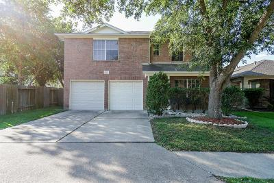 Katy Single Family Home For Sale: 19222 Indian Stone Lane
