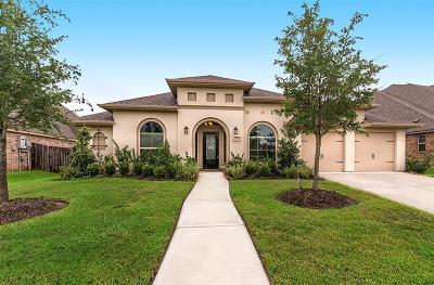 Pearland Single Family Home For Sale: 3393 Ashton Springs Lane