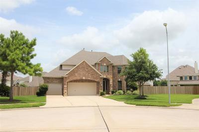 Rosenberg Single Family Home For Sale: 603 Coldstone Court