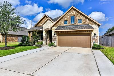 Pearland Single Family Home For Sale: 3419 Harvest Valley Lane