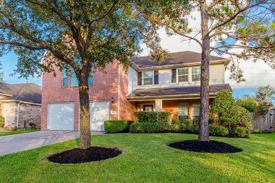 Richmond Single Family Home For Sale: 1514 Brazos Traces Drive