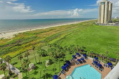 Galveston Mid/High-Rise For Sale: 1401 E Beach Drive #908