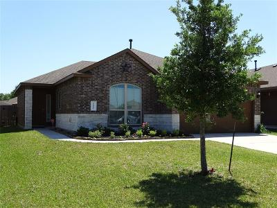 Porter Single Family Home For Sale: 22591 Range Haven Lane