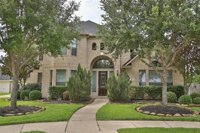 Fort Bend County Single Family Home For Sale: 21406 Briar Landing Lane