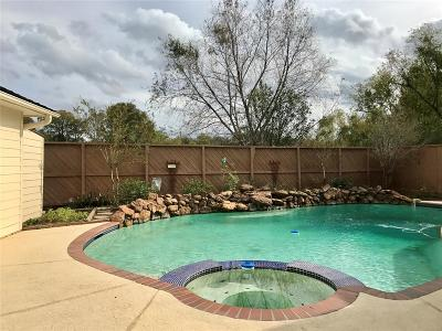 Houston Single Family Home For Sale: 911 Ivy Wall Drive