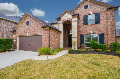 Spring Single Family Home For Sale: 7238 Thelfor Court