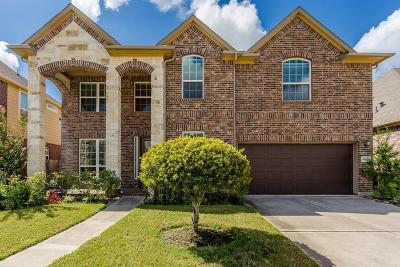 Sugar Land Single Family Home For Sale: 4627 Stoney Ridge Court