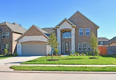 Single Family Home For Sale: 3006 Golden Honey Lane