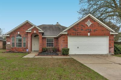 Willis Single Family Home For Sale: 12831 Capricornus Drive